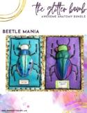 Beetle Mania Lesson Plan