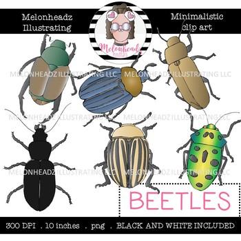 Beetle clip art - Minimal Style - Mini - Melonheadz Clipart