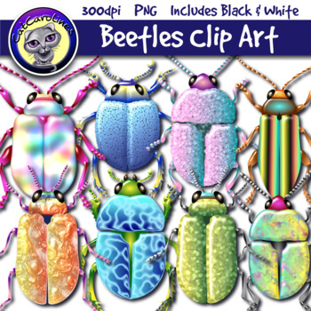Beetles Bugs Clipart Set