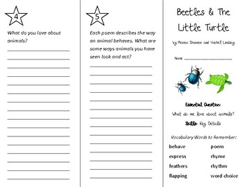 Beetles & The Little Turtle Trifold - Wonders 2nd Grade Unit 2 Week 5