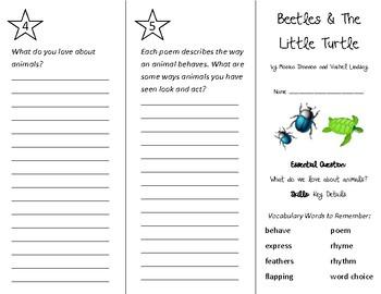 Beetles Trifold - Wonders 2nd Grade Unit 2 Week 5