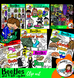 Beetles and bugs and 4 life cycles clip art- 117 images!!