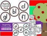 Beginning Consonant Blends Flash Cards