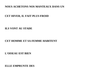 Beginning French - Sentence Matching Activity -Lesson Plan -