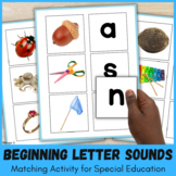 Beginning Letter Sounds Activity