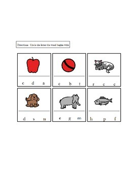 Beginning Letters/Sounds Worksheets/Activity   AUTISM