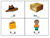 Beginning Middle End Phonological Awareness Task Cards