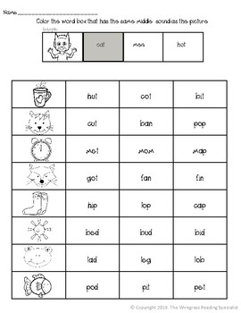 Beginning, Middle, Ending Sound Picture Word Match Bundle! DISCOUNT!