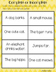 Beginning Sentence Writing, Parts of Speech - Nouns, Verbs, Adjectives