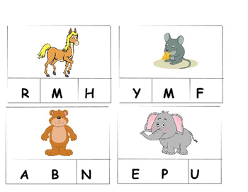 Beginning Sound Fluency Picture Cards