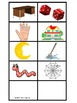 Beginning Sound/Letter Concentration