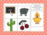 Beginning Sounds Assessment Cards:  Blends and Digraphs