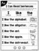 Beginning Sounds Fluency Sentences