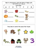 Phonics - Beginning Sounds and Rhyming practice worksheet