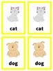 Beginning Vocabulary Flash Cards