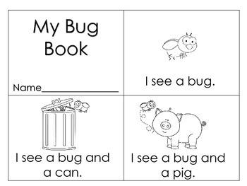 Beginning Words - cat, dog, bug, fish