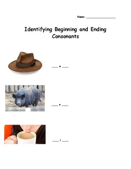 Beginning and Ending Consonant Assessment
