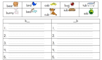 Beginning and Ending Sound Word Sort (Bb)
