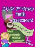 Beginning of 3rd Grade or End of 2nd Grade CCSS Math Assessment