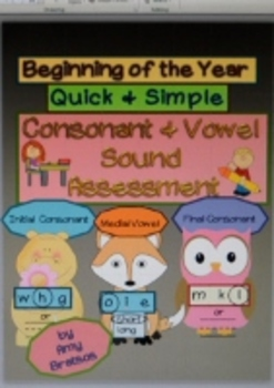 Beginning of the Year Consonant & Vowel Sound Assessment