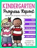 Kindergarten Progress Report