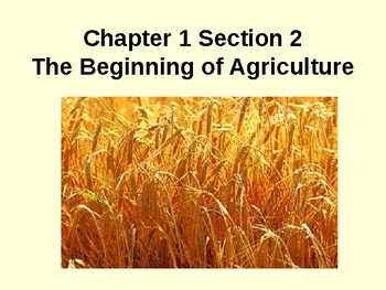 Beginnings of Civilizations - The Beginnings of Agriculture 1.2