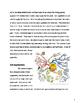 POSITIVE Classroom Behavior, Discipline Management and Org