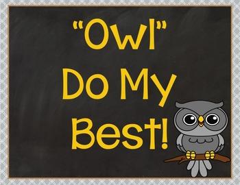 Behavior Clip Chart: Owls