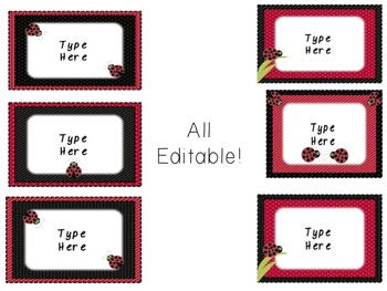 Behavior Chart and classroom signs - Ladybug Themed Editable!