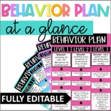 Behavior Intervention Plan at a Glance | EDITABLE