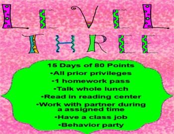 Behavior Level System