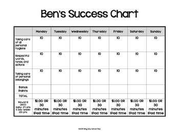 Behavior Success Charts for Elementary or Middle School ***FULLY EDITABLE***