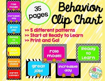 Behavior Tracking Clip Chart