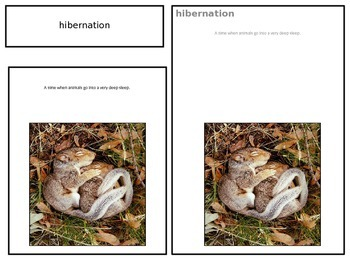 Behavioral Adaptations 3 part cards