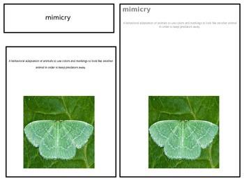 Behavioral Adaptations 3 part cards