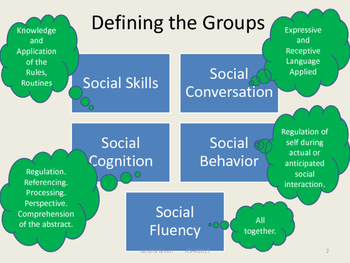 Behaviorally Based  Data Collection Procedures  for Social Skills Therapy