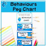 Behaviour Peg Chart | Printable A3 and A4