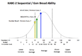 Bell Curve Graph for Psychoeducation Evaluation Results -