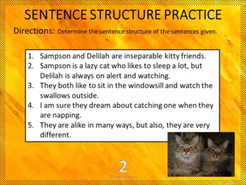Bell Ringers - Common Core - Sentence Structure