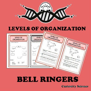 Bell Ringers - LEVELS OF ORGANIZATION