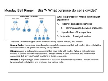 Bell Work topic:  Matter & Chemistry with Genetic review