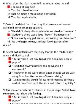 Bella and Allen (Lit) Text & Question Set - FSA/PARCC-Style Assessment