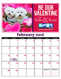 Bella and Rosie February Calendar