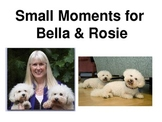 Bella and Rosie Small Moment Writing Mini Lesson and How to Draw the Dogs