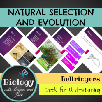 Bellringers: Natural Selection and Evolution