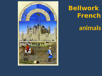 Bellwork French vocabulary animals