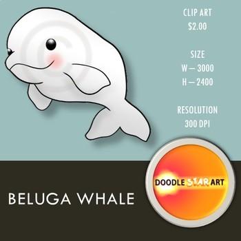 Beluga Whale Clip Art