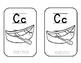 9a. Benchmark Adelante Flash Cards & Coloring Book **SPANISH**