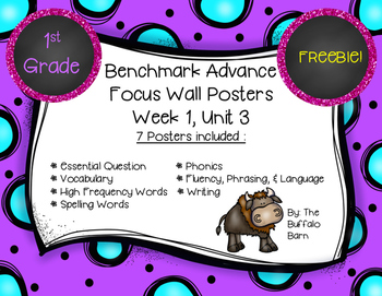 Benchmark Advance 1st (FIRST) Grade Focus Wall Posters FREEBIE