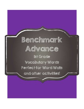 Benchmark Advance 1st (First) Grade Vocabulary cards-Chalkboard Style